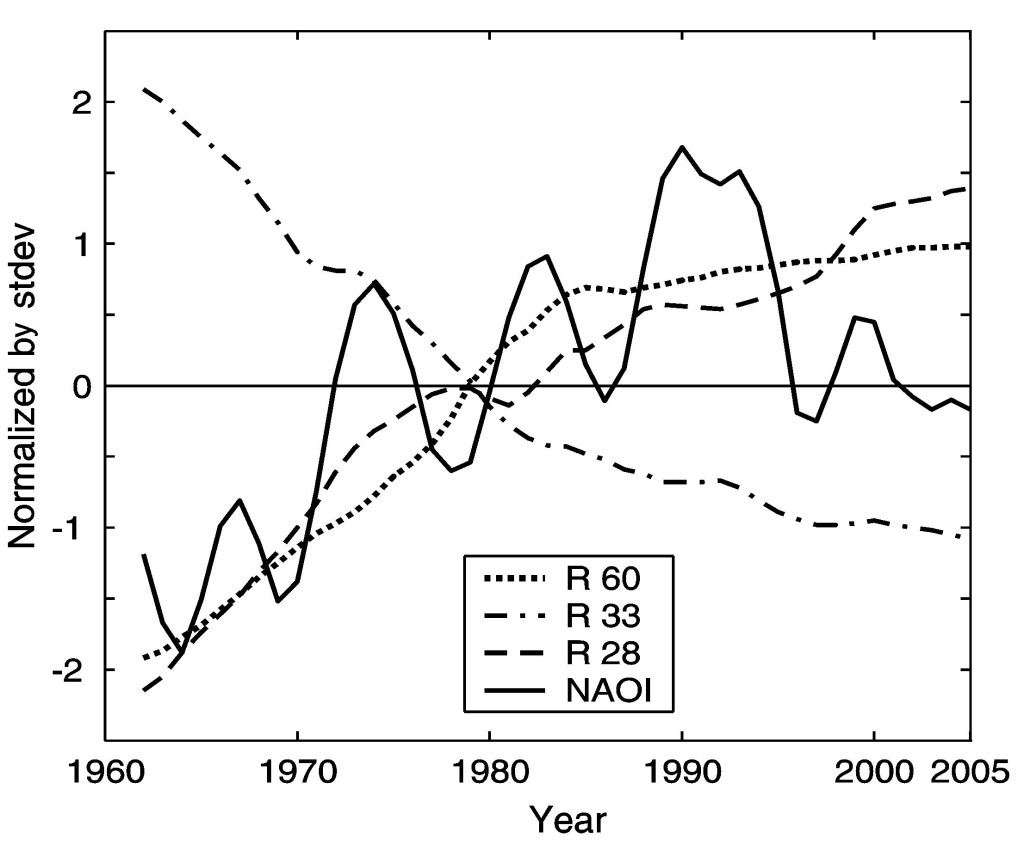 Fig. 3 - Time evolution of shoreline mobility at R 60, R 33 and R 28  benchmarks and Hurrell's NAO index